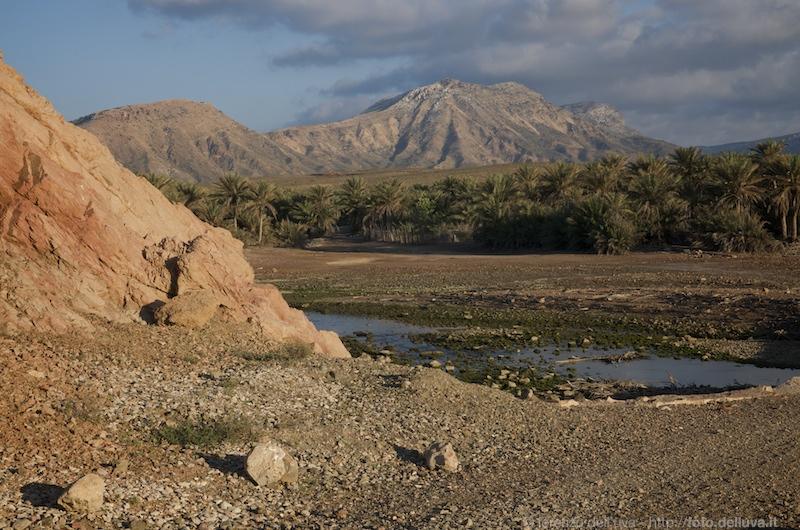 socotra (yemen)  13