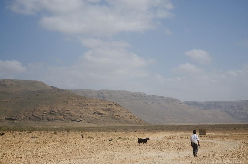 socotra (yemen)  14