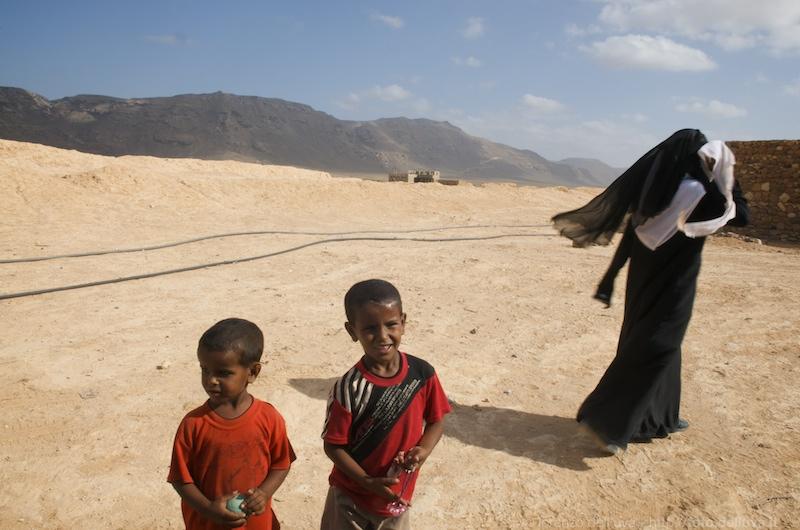 socotra (yemen)  6
